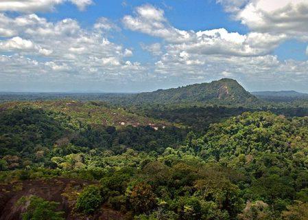 AWAC to Close Suriname's Suralco Refinery