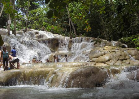 Noranda Bauxite Praised For Land Reclamation Efforts In Jamaica